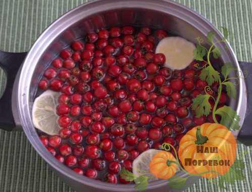 Варенье из шиповника: 9 рецептов приготовления