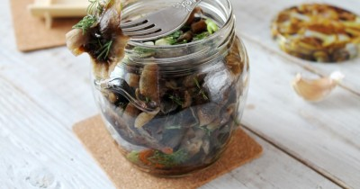Грибы вешенки, маринованные на зиму: очень вкусные рецепты быстрого приготовления маринованных вешенок