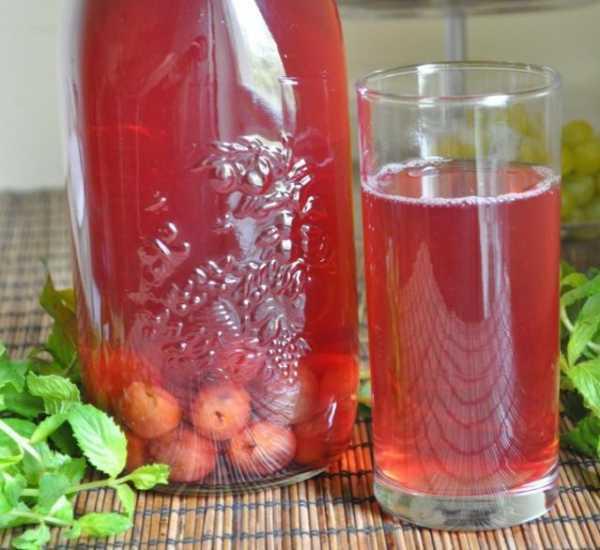 Как сделать вино из старого или забродившего компота в домашних условиях?