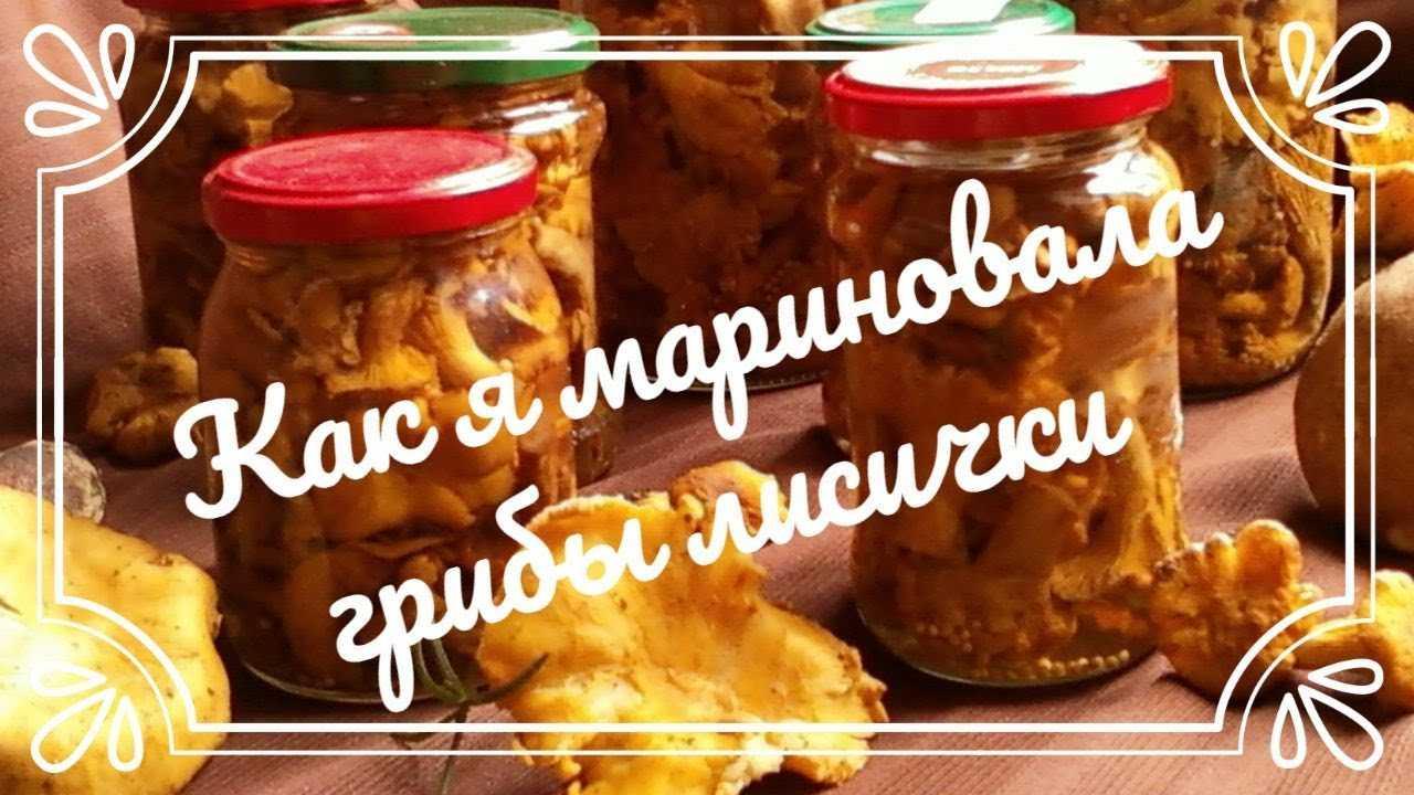 Как приготовить маринованные лисички на зиму — простой и правильный рецепт