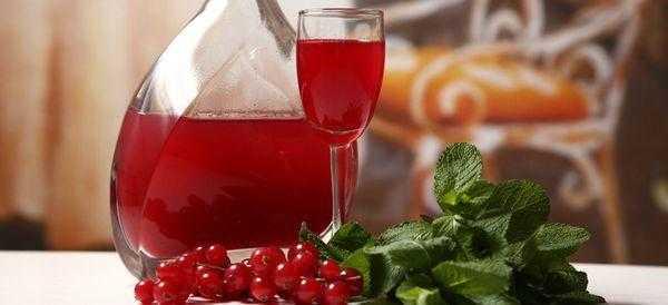 Калина красная — целебная настойка с привкусом романтики