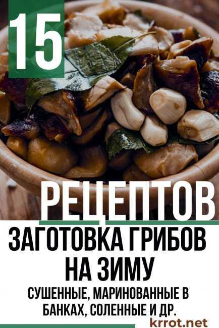 Тушеные подосиновики: рецепт и фото