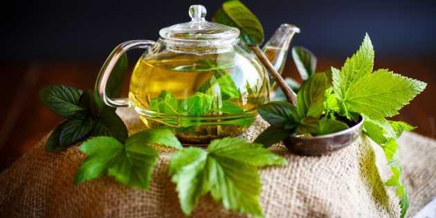 Как сушить листья смородины для чая: два лучших способа