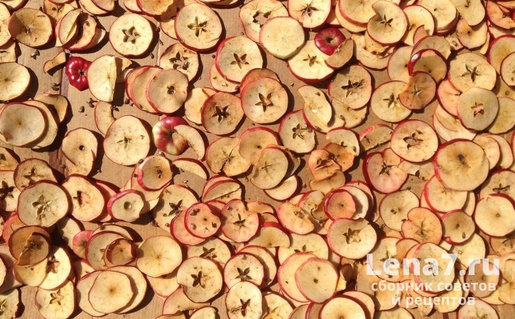 Целебные свойства сушеного топинамбура, его влияние на здоровье, приготовление и использование для лечения