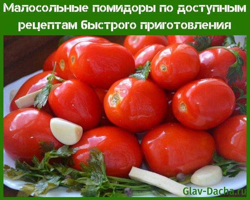 Малосольные помидоры — рецепты быстрого приготовления