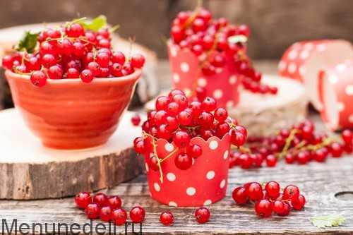 Как заморозить красную смородину на зиму: различные способы заморозки хранения размораживания приготовления ягодного пюре Польза замороженной красной смородины