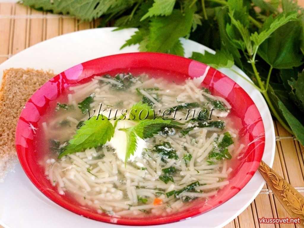 Как приготовить суп из крапивы по пошаговому рецепту с фото
