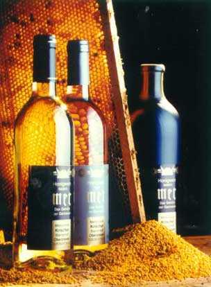 Вино из бузины: рецепты из красной, из черной бузины, из цветов