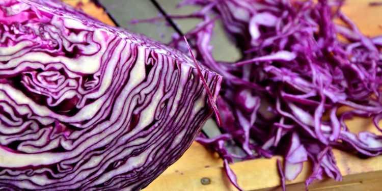Краснокочанная капуста: очень вкусные рецепты на зиму в банке с фото, самые вкусные заготовки из красной капусты - пальчики оближешь