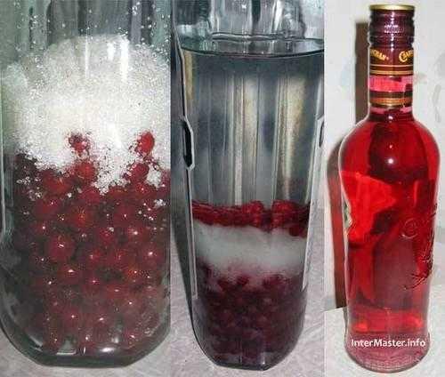Можно ли делать наливку из черной и красной смородины? как приготовить напиток?