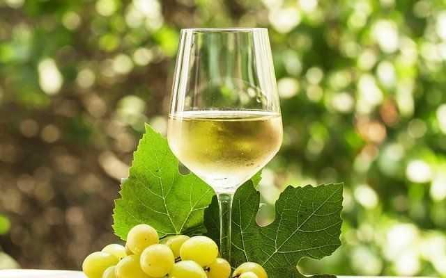 Как сделать вино из сока: все секреты приготовления | КТО?ЧТО?ГДЕ?