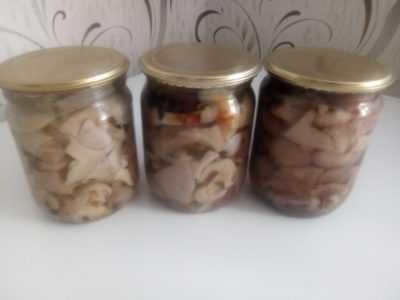 Как лучше закрыть грибы вешенки на зиму: видео и рецепты домашних заготовок