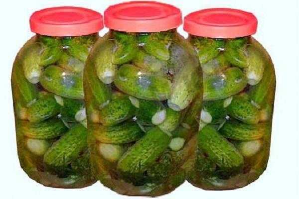 Огурцы в листьях хрена на зиму: 3 рецепта засола с пошаговым описанием, хранение
