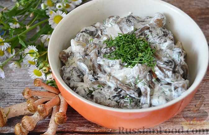 Грибной соус – классический рецепт и оригинальные вариации вкуснейшего соуса для разных блюд
