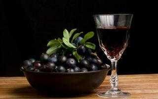 Вино из терна в домашних условиях по технологии виноделов