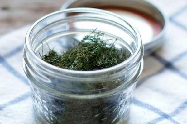 Как засолить зелень на зиму - простые и вкусные рецепты