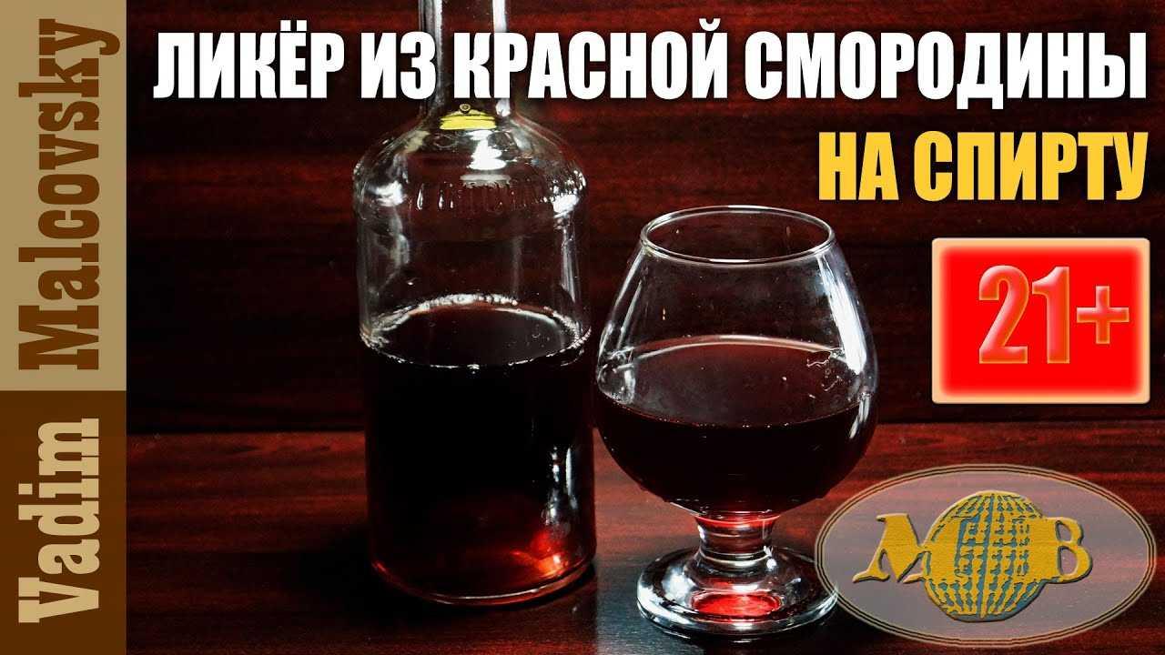 Наливки из красной смородины в домашних условиях: простые рецепты на водке или самогоне, спиртовая настойка и как сделать напиток с вином