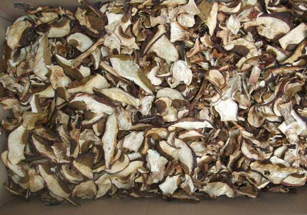 Как засушить грибы на зиму в домашних условиях
