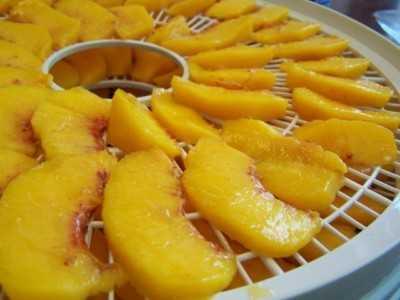 Сушеный персик - как называется, свойства и калорийность сухофрукта (видео + 70 фото)
