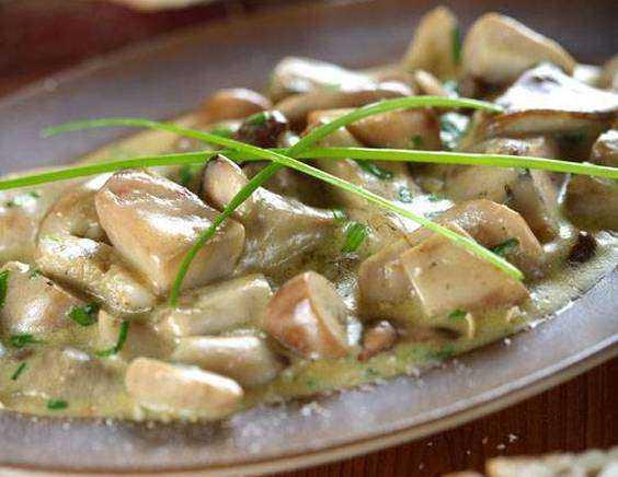 Белый соус — лучшие рецепты. как правильно и вкусно приготовить белый соус.