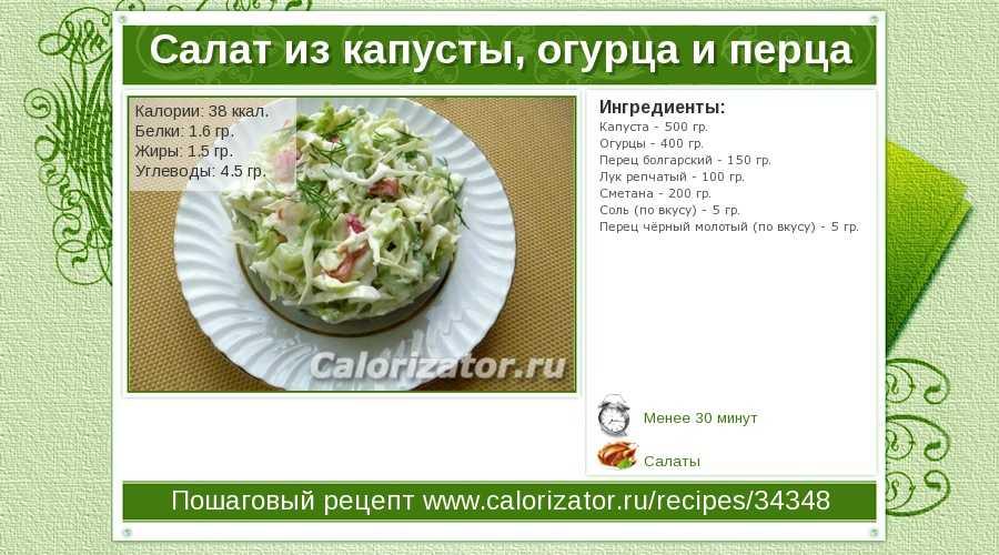 Салат из свежей капусты и моркови – 12 вкусных рецептов