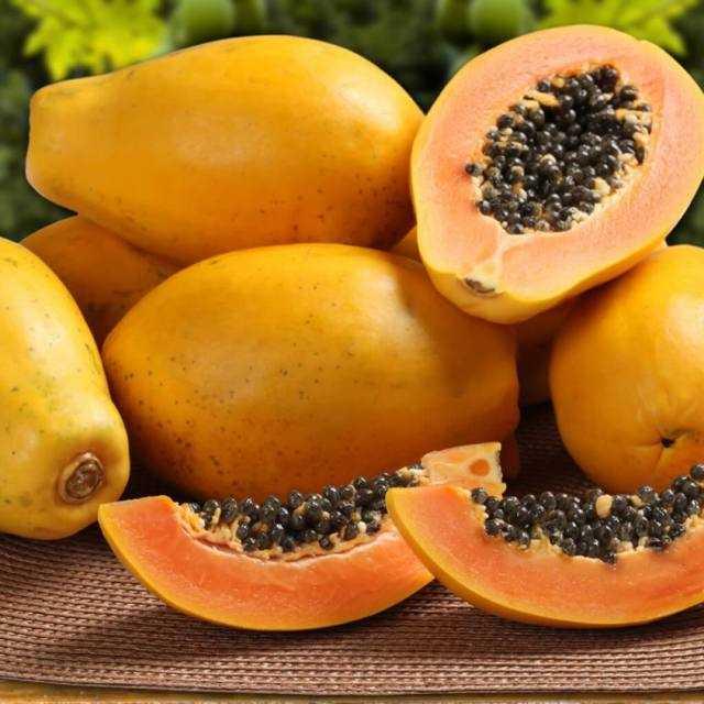 Папайя фрукт: полезные свойства и вред для организма, как кушать