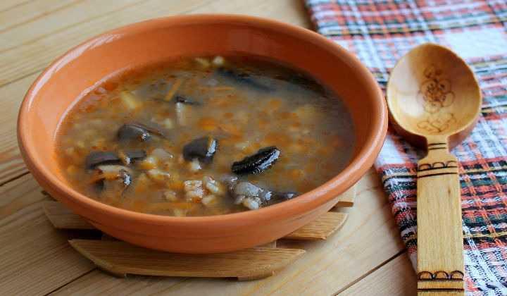 Как сварить грибной суп из замороженных опят: фото, рецепты приготовления первых блюд