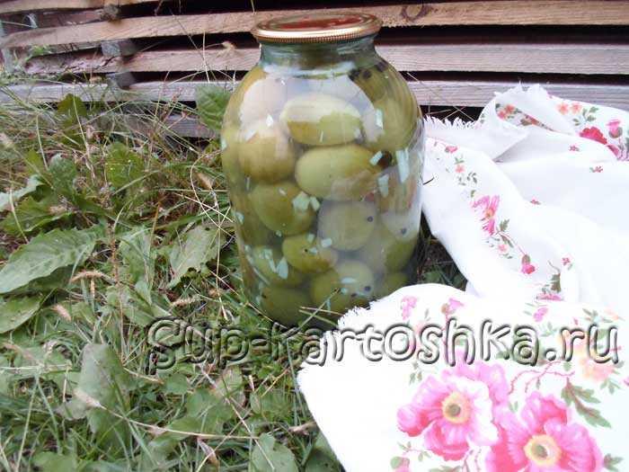Очень вкусные салаты из зеленых помидоров на зиму – рецепты без стерилизации