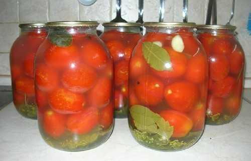 Соленые помидоры в банках, как бочковые: 6 простых рецептов