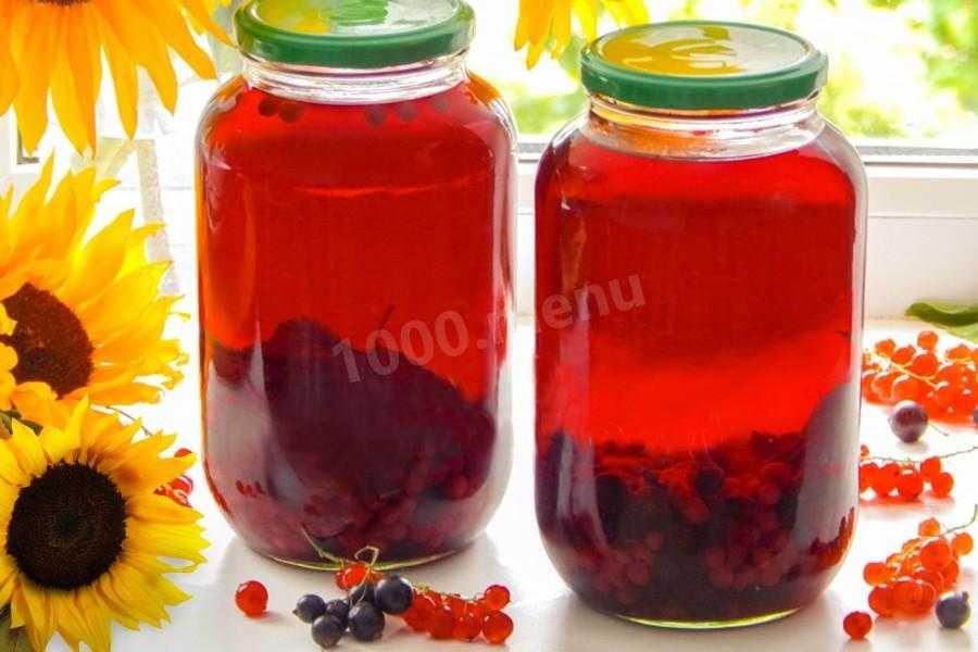 Компот из красной смородины - 5 простых рецептов на зиму без стерилизации