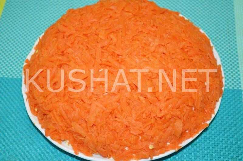 Салат лисья шубка – 5 рецептов с селедкой и грибами