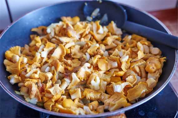 Песочный пирог » ароматный» с лисичками, сыром и луком