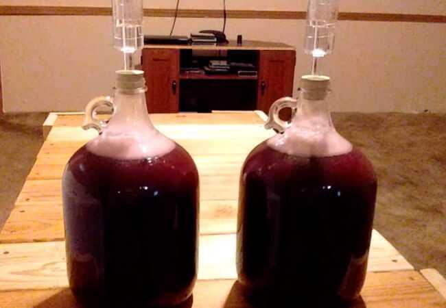 Вино из компота в домашних условиях простой рецепт своими руками