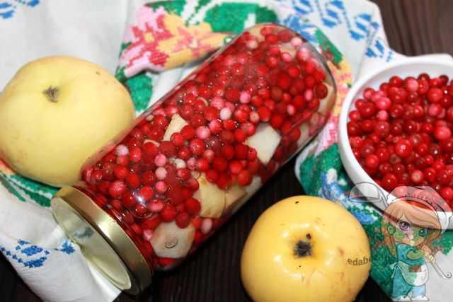 Народные рецепты брусники с медом