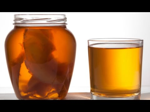 Чайный гриб – как ухаживать и употреблять. как приготовить напиток из чайного гриба