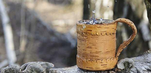 Квас из березового сока домашний рецепт с фото
