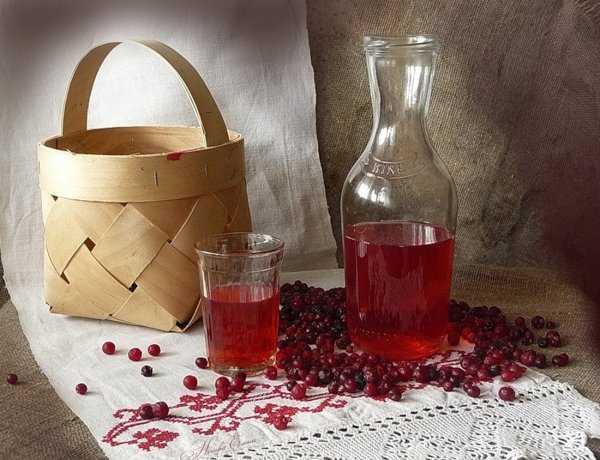 Домашняя настойка из брусники – рецепт, брусничное вино, наливка