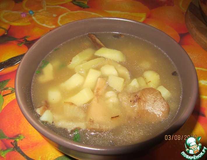 Ароматная груздянка из свежих груздей: рецепт вкусного супа, подборка простых пошаговых рецептов из свежих грибов с мясом или овощами, советы и рекомендации по приготовлению.