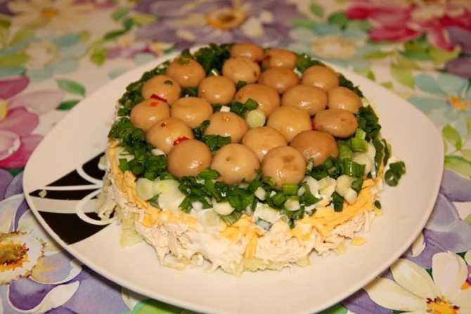 Салат лесная поляна – 7 вкусных рецептов приготовления