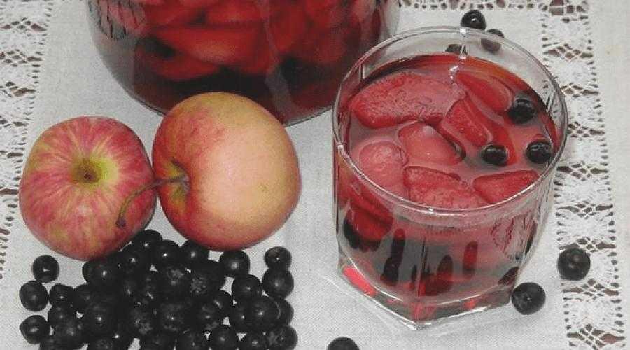 Подготовка ягод перед сушкой. Способы сушки черноплодки. Применение черноплодки. Правила хранения сухофруктов.