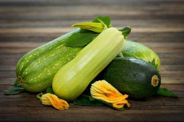 Как заморозить кабачки на зиму в морозилке Общие правила подготовки овощей способы заморозки