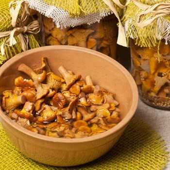 Подосиновики жареные: рецепт с фото пошагово. как жарить подосиновики?