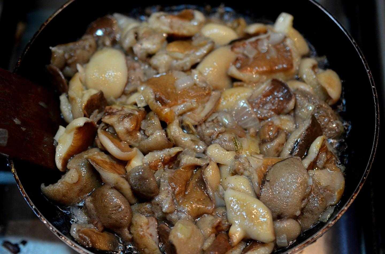 Маринованные вешенки: очень вкусный рецепт быстрого приготовления
