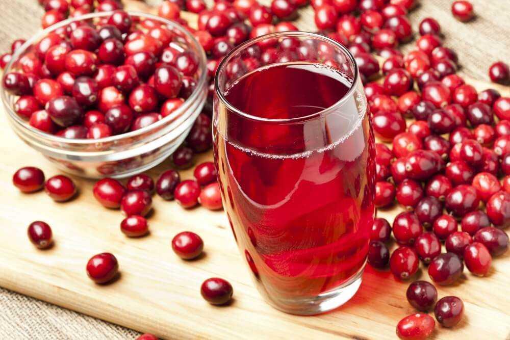 Вино из брусники в домашних условиях давайте приготоим вместе