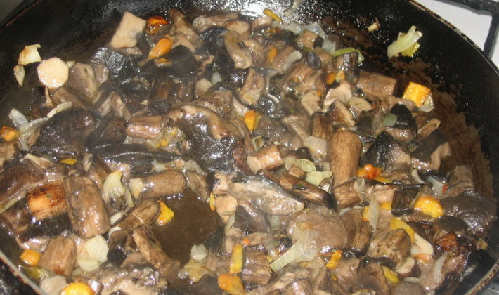 Жареные подосиновики: с картошкой и луком, на сковороде и в мультиварке, рецепты - растения и огород