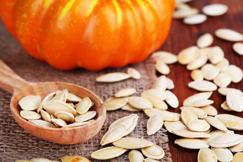 Семена тыквы - полезные и опасные свойства семечек тыквы