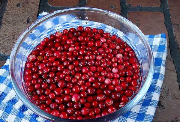 Замороженные ягоды: какая польза и и какой вред