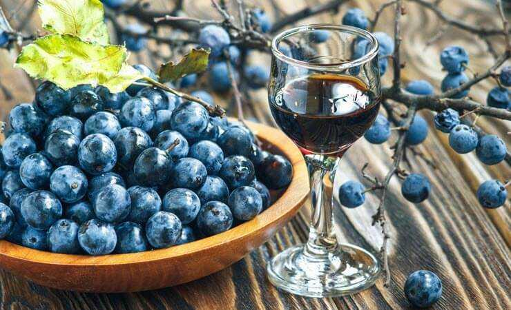 Вино из терна: простые пошаговые рецепты приготовления в домашних условиях