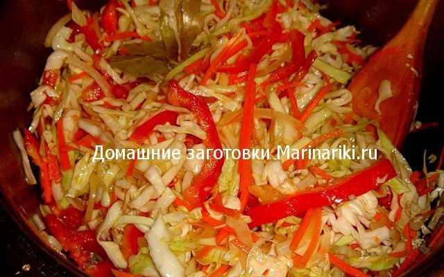 Квашеная капуста с болгарским перцем: пошаговые рецепты приготовления.