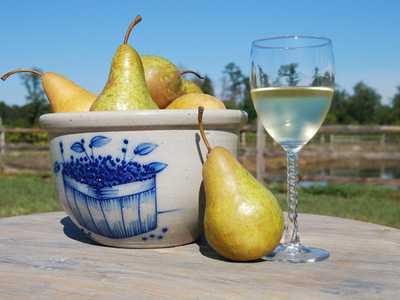 Вино из груши в домашних условиях: простой рецепт приготовления.